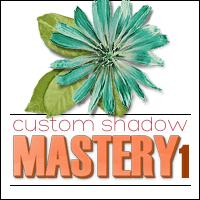 Custom Shadow Mastery 1