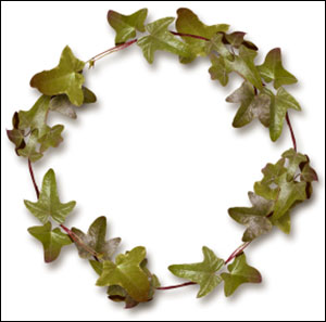 dst-ivy-wreath-img06