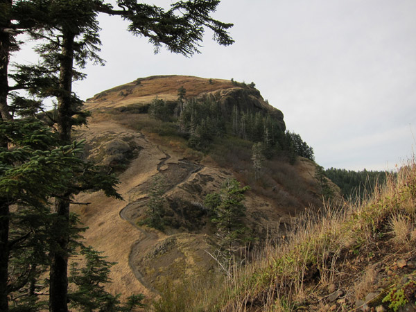 saddle mountain original