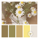 Paint Chip Inspiration - A Pretty Palette