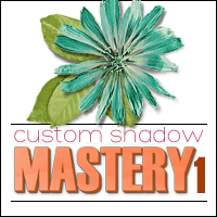 Custom Shadow Mastery 1